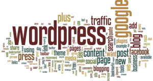 WordPress Kategorileri 2 Kolona Ayırma
