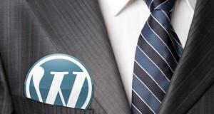 WordPress Yazar Verileri