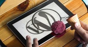 WordPress aramaları kapatmak